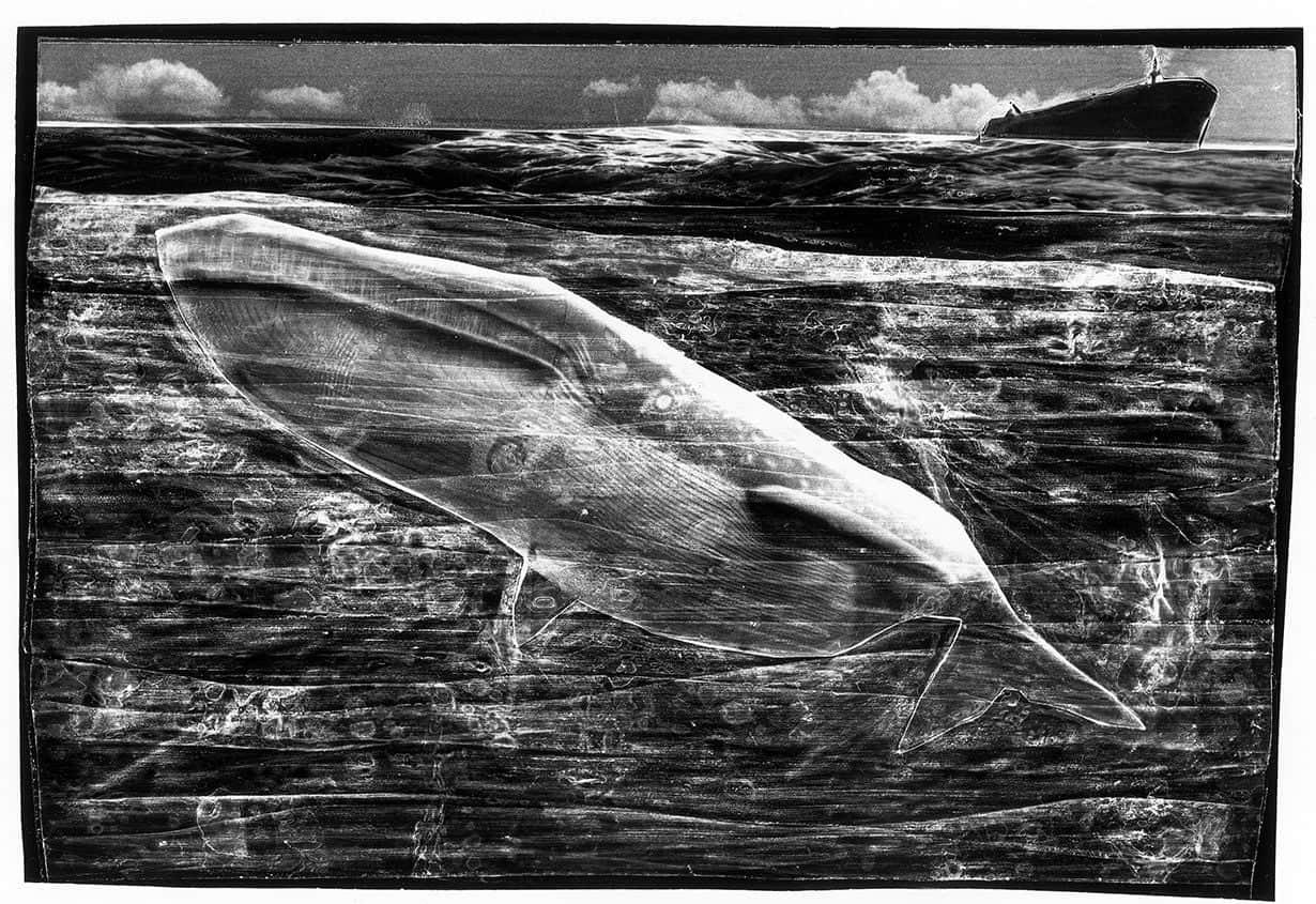 Marine Landscapes #01