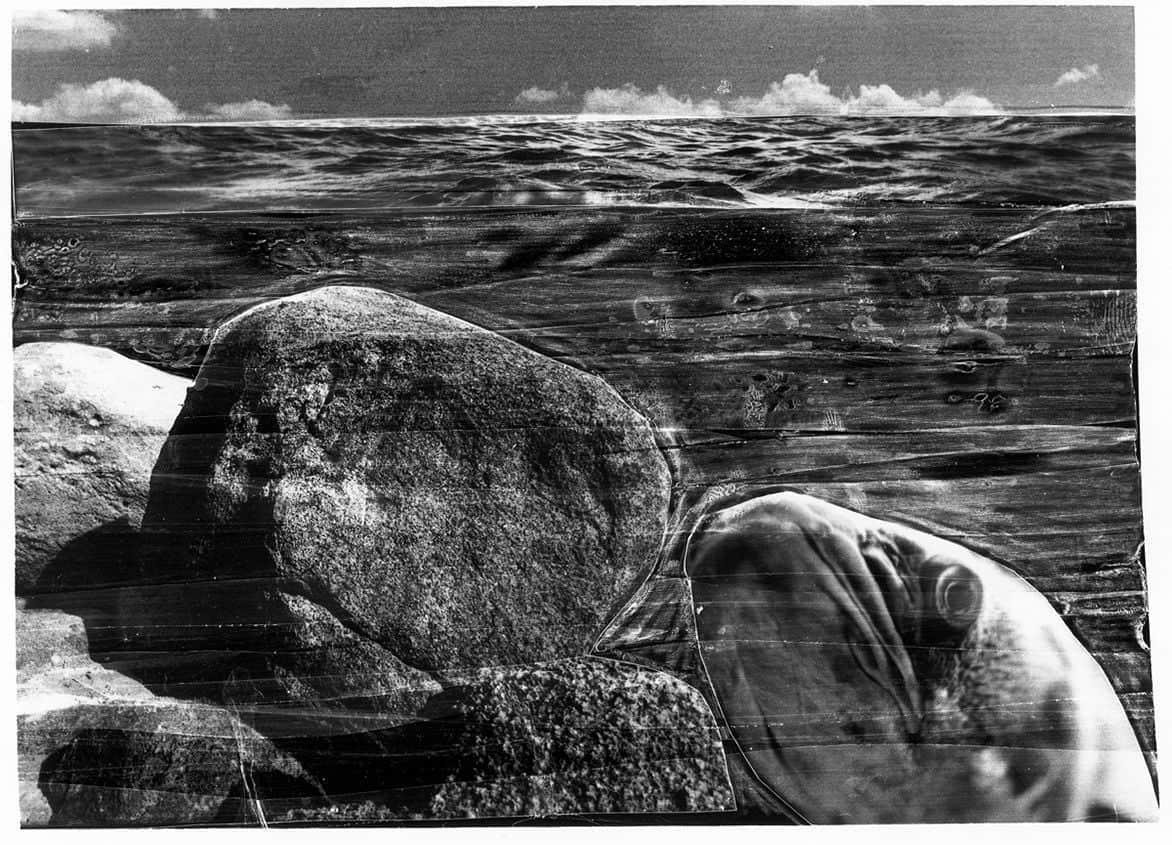 Marine Landscapes #02